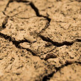 Hitzesommer 2018: Warum die mediale Debatte nichts an der Klimapolitik ändert